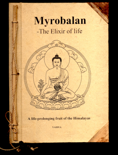 """Myrobalan - The elixir of life in the hand of the Medicine Buddha"" engl. Version unseres Buches"